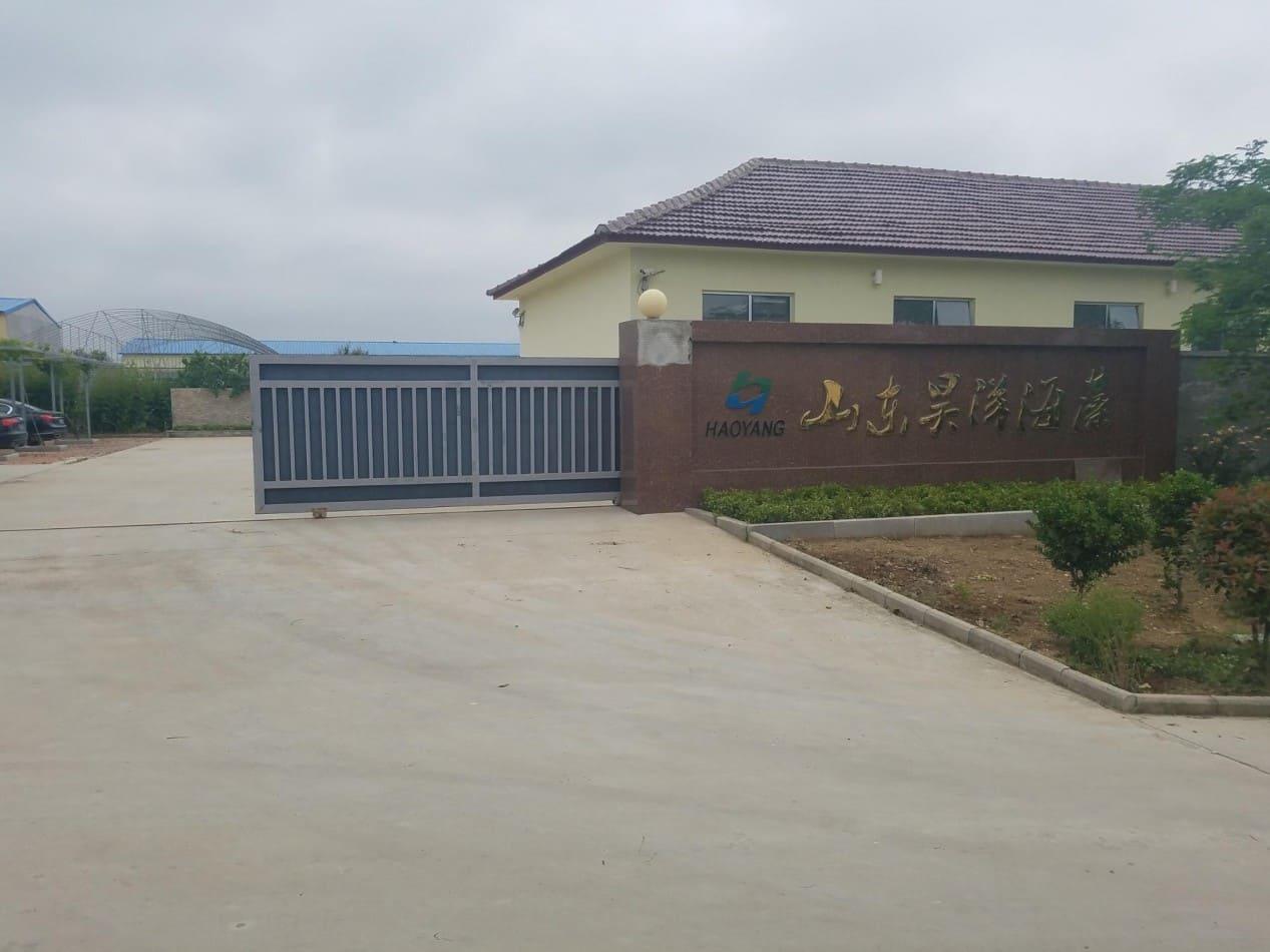 Shandong Topsea Seaweed Industrial Co.,Ltd