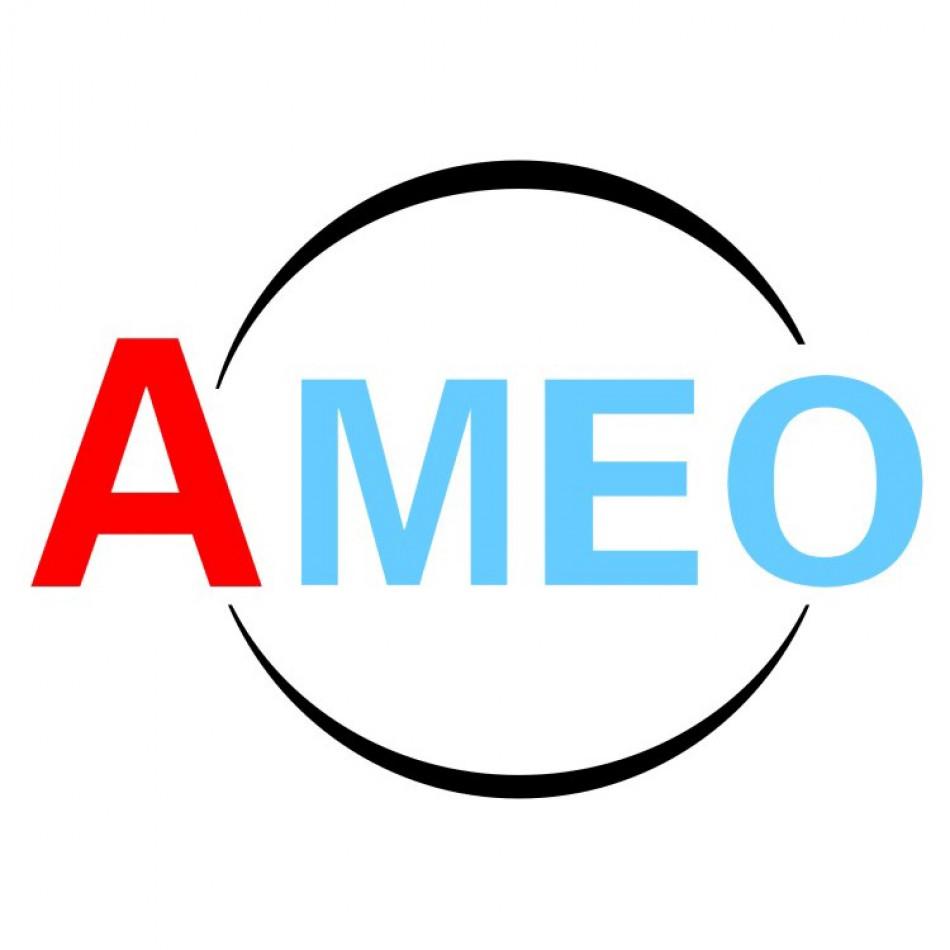 HANGZHOU AMEO IMPORT & EXPORT CO.,LTD