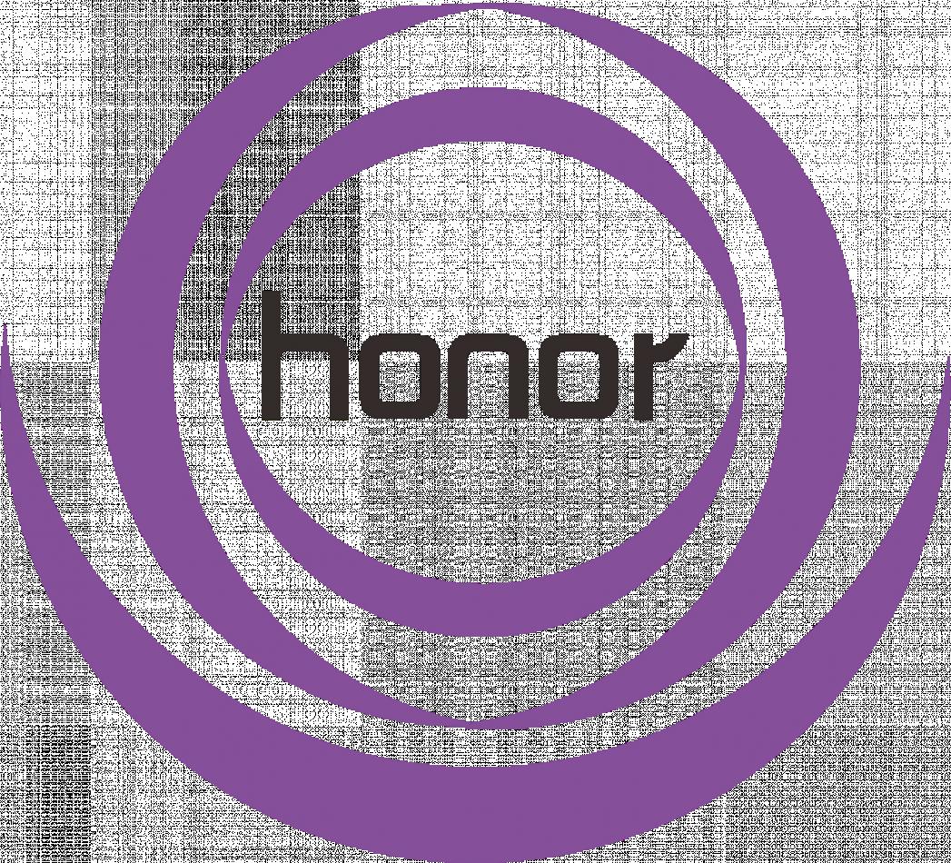 SHANXI HONOR CHEMICAL CO.,LTD