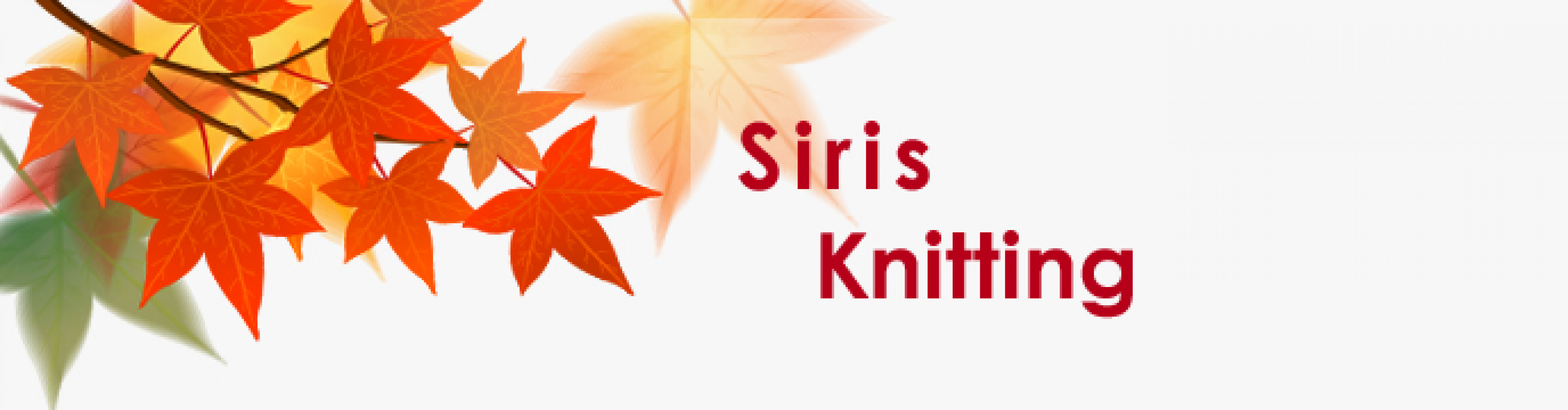 Siris Holding Group Co., Ltd.