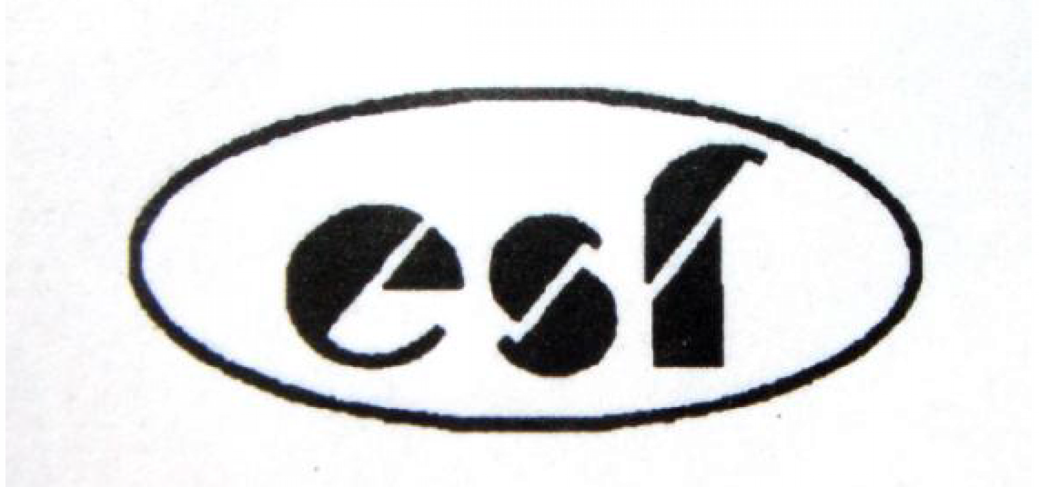 CHAHGZHOU YINGSHIFENG TEXTILE AND DYEING CO., LTD