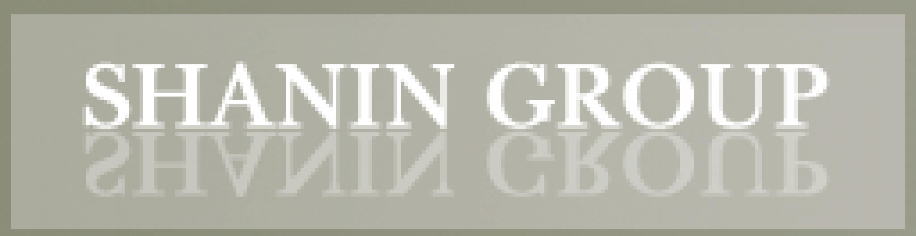 THE SHANIN CORPORATION (SHANIN GROUP)