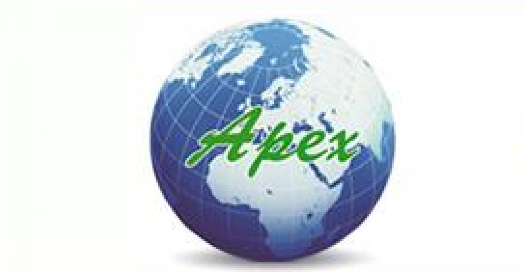 APEX ACCESSORIES COMPANY LTD