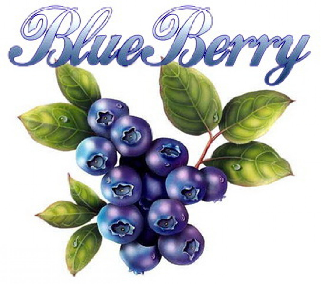 BLUEBERRY IMPEX CO., LTD.