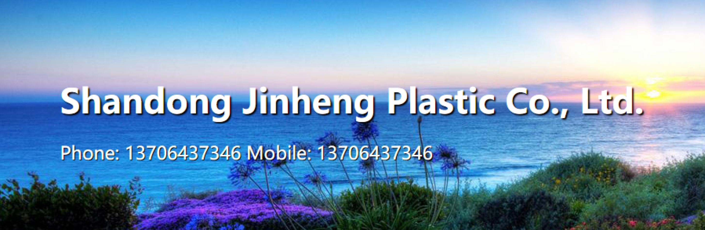 SHANDONG JINHENG PLASTICS CO. LTD