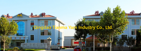 Jiangsu Kingtianma Yarn Co., Ltd